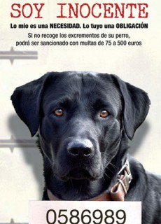 http://www.diariobahiadecadiz.com/webfiles/imagenes/4565/cartelcampanasoyinocent10_detalle.jpg